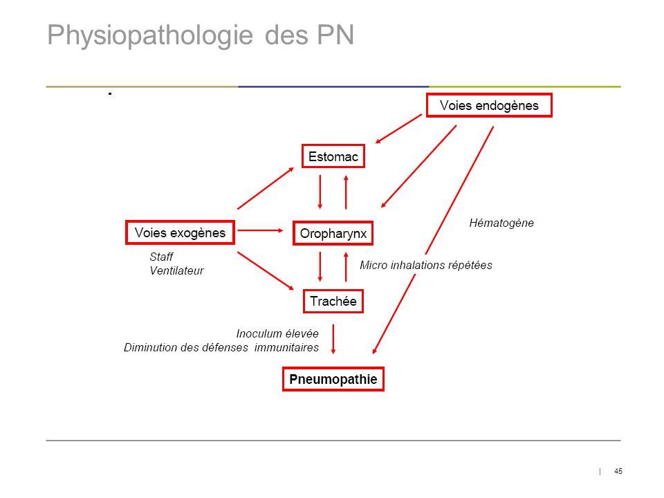 Physiopathologie des PN   45