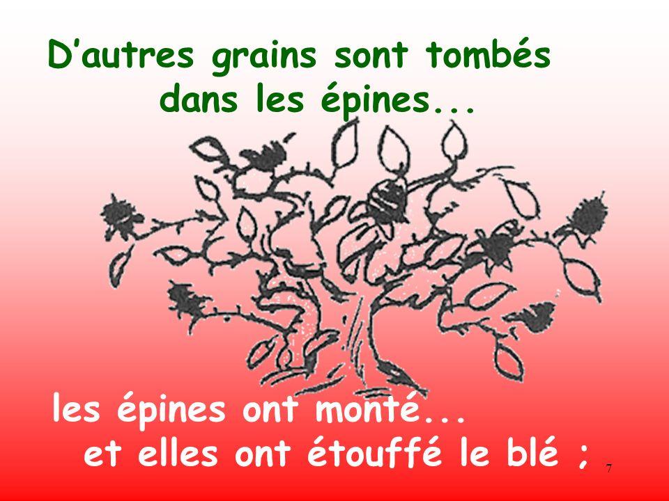 7 Dautres grains sont tombés dans les épines... les épines ont monté... et elles ont étouffé le blé ;