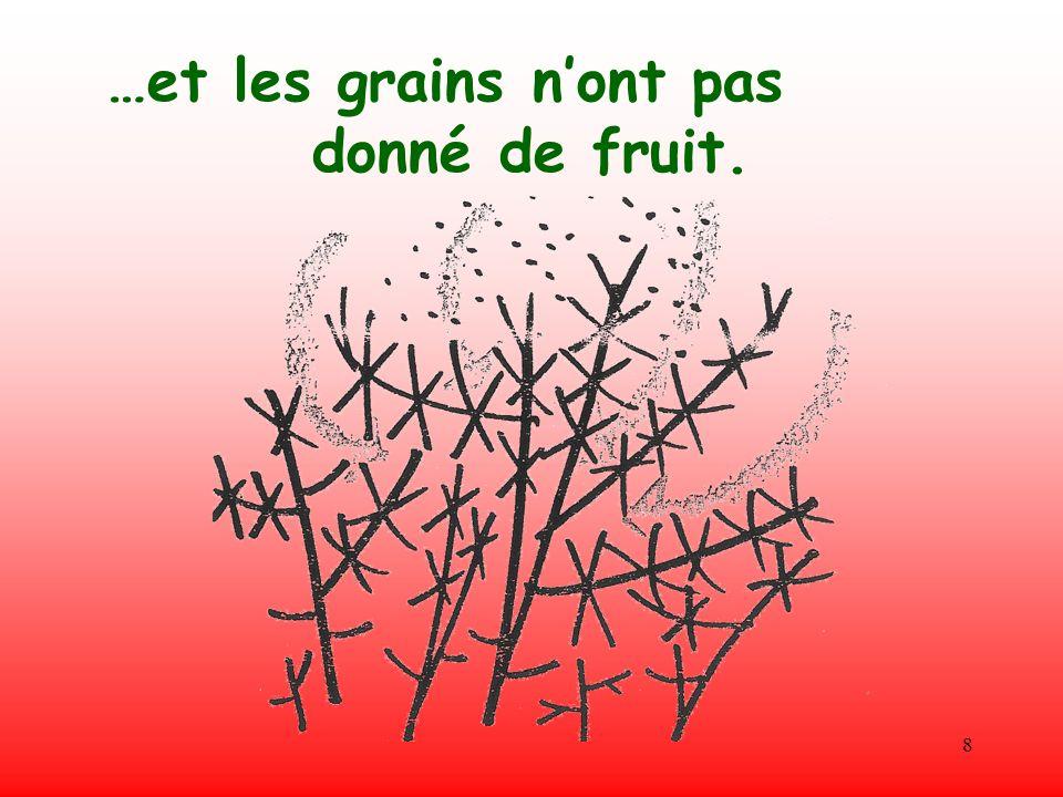 8 …et les grains nont pas donné de fruit.