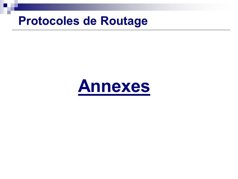 Configuration Routeur Annexes Protocoles de Routage