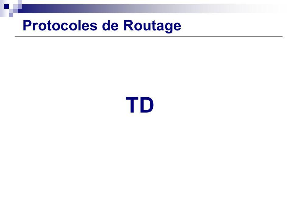 Configuration Routeur TD Protocoles de Routage