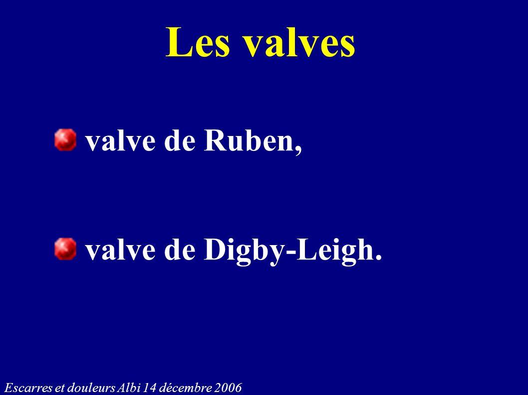 Escarres et douleurs Albi 14 décembre 2006 Les valves valve de Ruben, valve de Digby-Leigh.