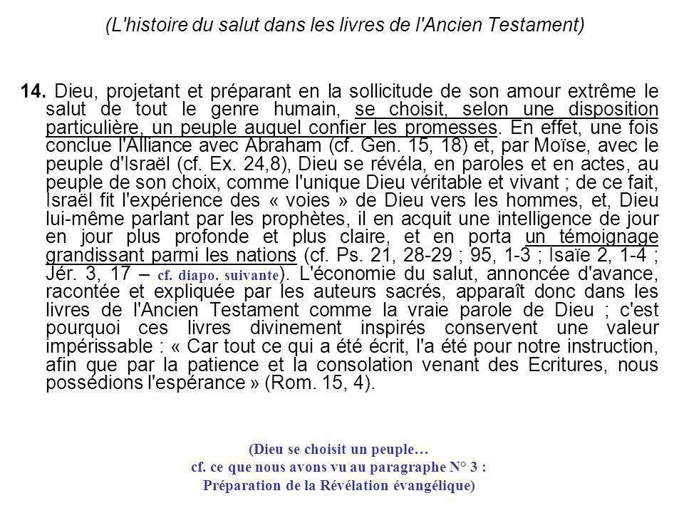(L'histoire du salut dans les livres de l'Ancien Testament) 14. Dieu, projetant et préparant en la sollicitude de son amour extrême le salut de tout l