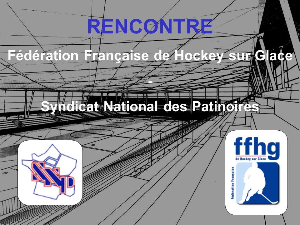 SOMMAIRE I) La Fédération Française de Hockey sur Glace II) État des lieux et constats III) Organisation FFHG / FFSG sur la question des patinoires IV) Développement des patinoires V) Partenariat à bâtir VI) Avenir