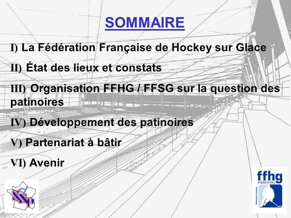 I ) La Fédération Française de Hockey sur Glace Historique : Etats Généraux du Hockey Français ( Grenoble 5-6 mai 2001) : Mise en place de groupes de travail thématiques pour recenser les revendications de tous les acteurs du hockey et mettre en œuvre des solutions Assemblée Générale de Toulon (12-13 juin 2004) : Concrétisation de lautonomie du Hockey sur Glace avec la création de lAEHF Assemblée Générale de Paris (12 juin 2005) : lAEHF est mandatée pour mener à bien le processus dindépendance du hockey sur glace français Assemblée Générale dAmiens (29-30 avril 2006) : création de la Fédération Française de Hockey sur Glace Fin décembre 2005 - Début janvier 2006 : les commissions nationales masculines et féminines et lAEHF acceptent de seffacer pour laisser place à la création de la FFHG