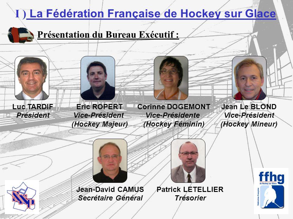 - Avant la création de la FFHG, linterlocuteur pour le hockey était le Président de la FFSG par l intermédiaire de la Commission des Normes et Équipements - Il est important de conserver des relations en bonne intelligence avec le Syndicat National des Patinoires - Des efforts restent à fournir par les hockeyeurs en termes de respect des équipements et des horaires - Beaucoup d équipements ont fermés ces dernières année - Bien souvent, ce sont les clubs qui font pression pour que les patinoires ne ferment pas (Athis Paray, Meudon, Bordeaux, etc…) II ) État des lieux et Constats