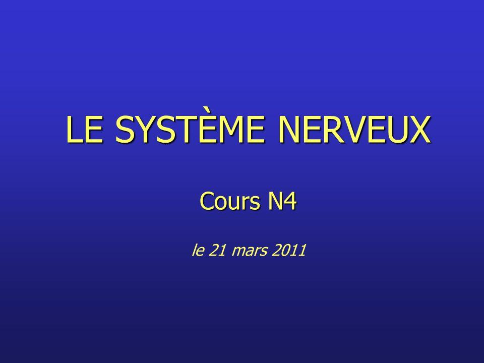 LE SYSTÈME NERVEUX Cours N4 LE SYSTÈME NERVEUX Cours N4 le 21 mars 2011