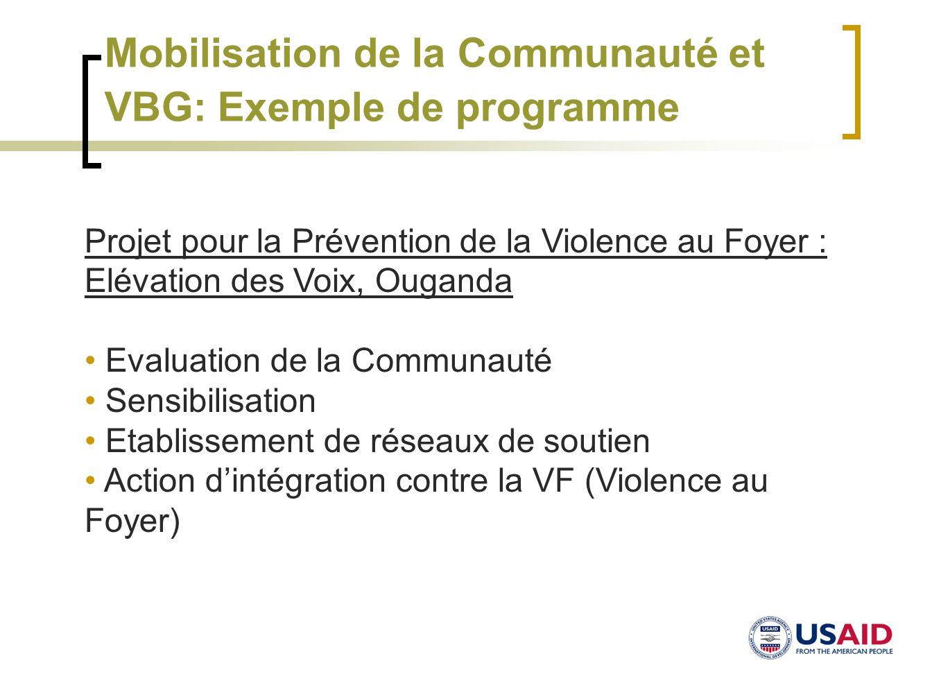 Mobilisation de la Communauté et VBG: Exemple de programme Projet pour la Prévention de la Violence au Foyer : Elévation des Voix, Ouganda Evaluation