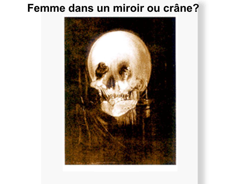 Femme dans un miroir ou crâne?