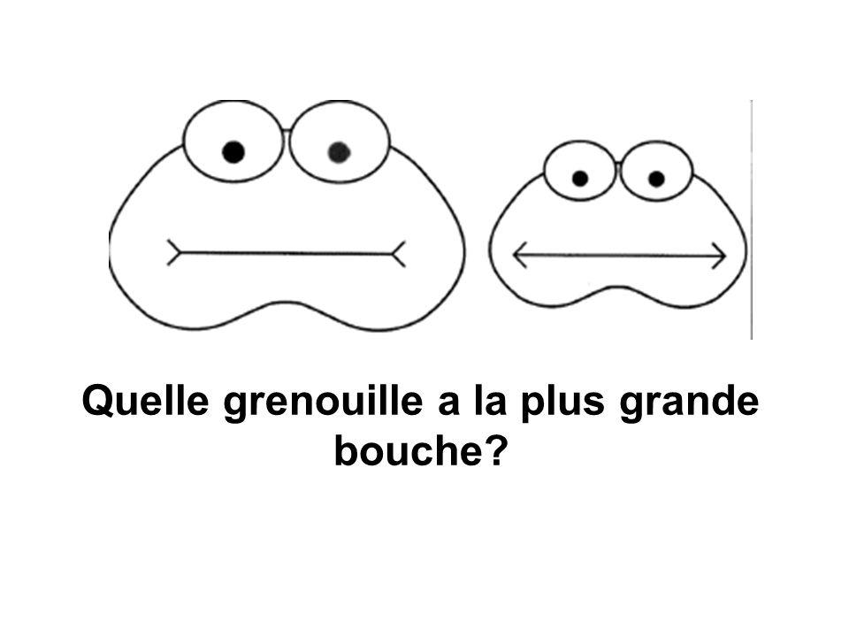 Quelle grenouille a la plus grande bouche?