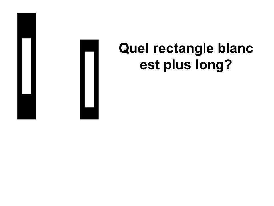 Quel rectangle blanc est plus long?