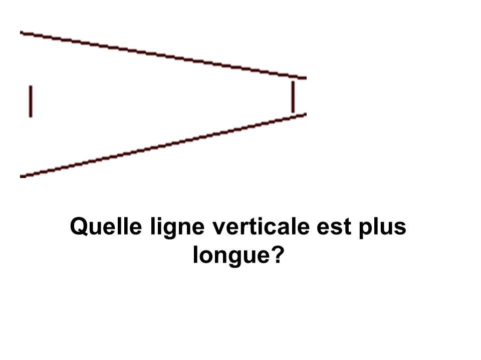 Quelle ligne verticale est plus longue?