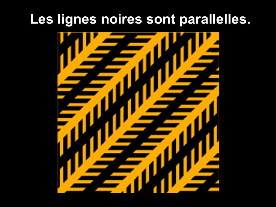 Les lignes noires sont parallelles.