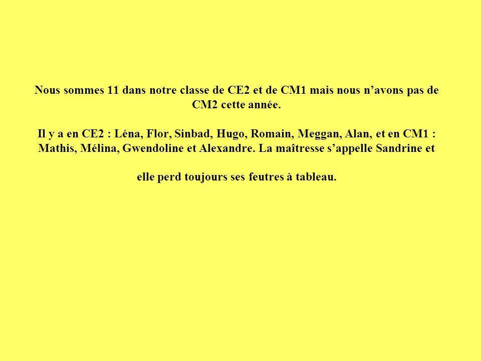 Nous sommes 11 dans notre classe de CE2 et de CM1 mais nous navons pas de CM2 cette année. Il y a en CE2 : Léna, Flor, Sinbad, Hugo, Romain, Meggan, A