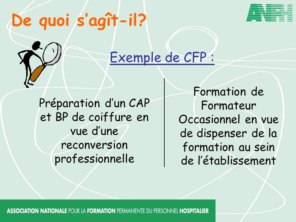 De quoi sagît-il? Exemple de CFP : Préparation dun CAP et BP de coiffure en vue dune reconversion professionnelle Formation de Formateur Occasionnel e