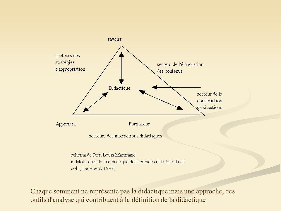 Chaque somment ne représente pas la didactique mais une approche, des outils d'analyse qui contribuent à la définition de la didactique