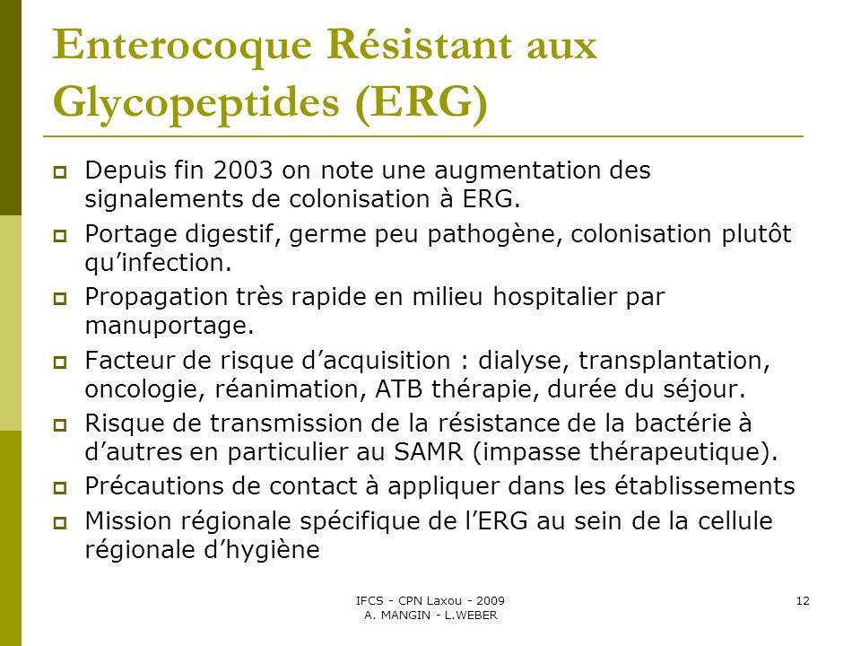 IFCS - CPN Laxou - 2009 A. MANGIN - L.WEBER 12 Enterocoque Résistant aux Glycopeptides (ERG) Depuis fin 2003 on note une augmentation des signalements