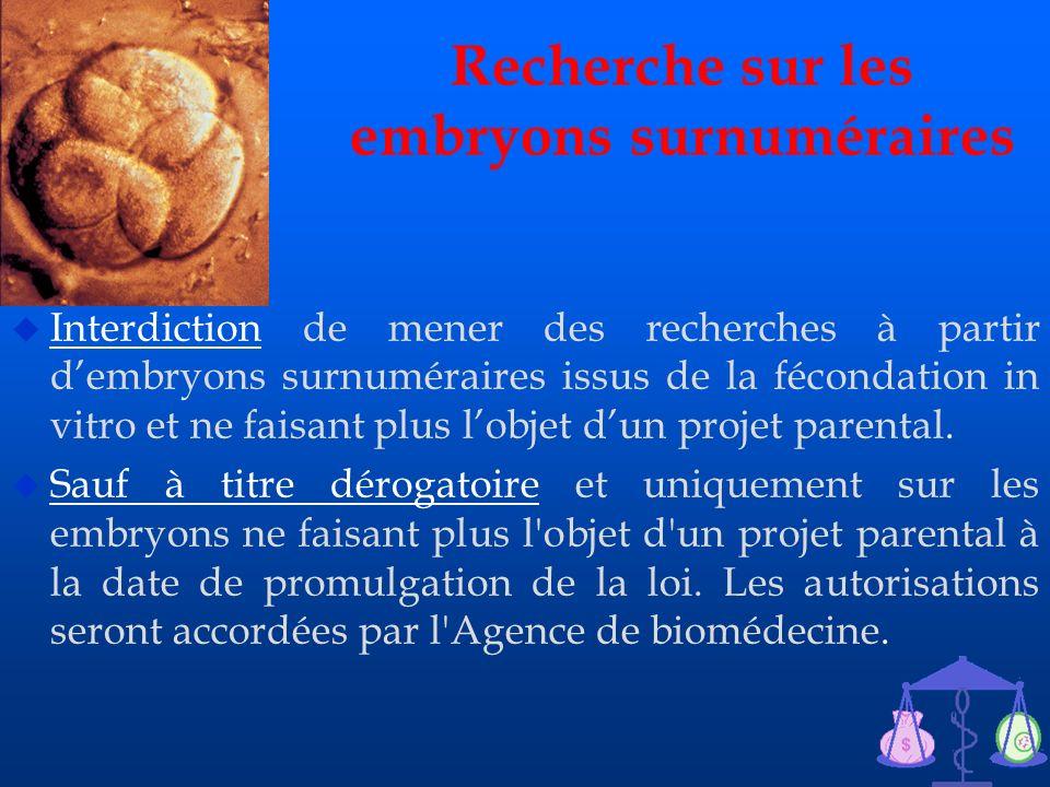 21 Recherche sur les embryons surnuméraires u Interdiction de mener des recherches à partir dembryons surnuméraires issus de la fécondation in vitro e