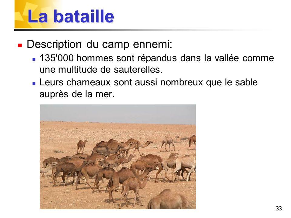 33 La bataille Description du camp ennemi: 135'000 hommes sont répandus dans la vallée comme une multitude de sauterelles. Leurs chameaux sont aussi n