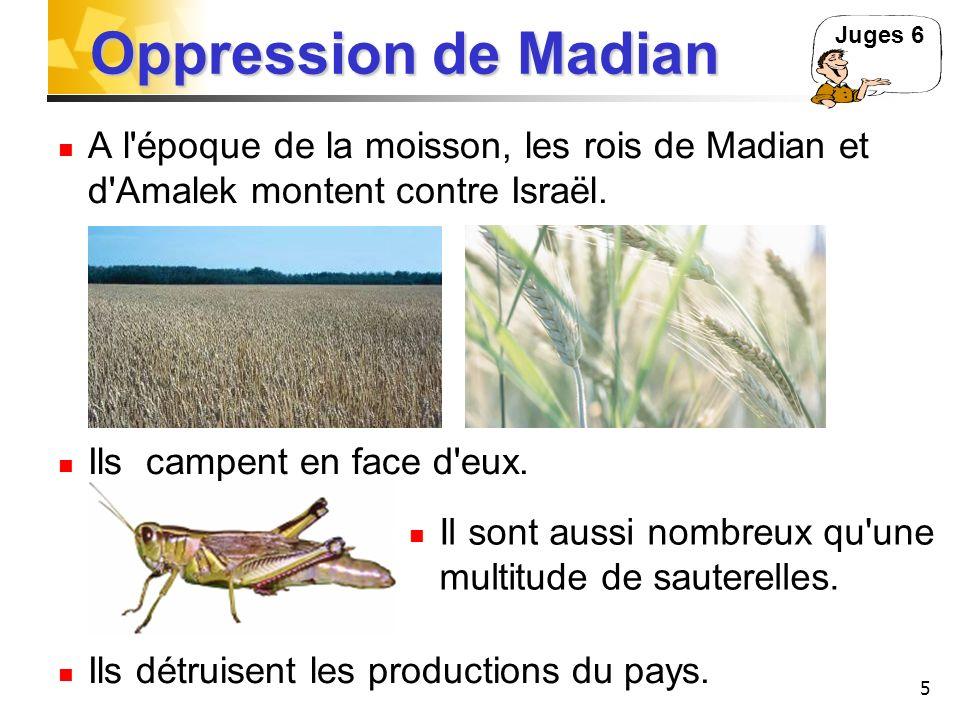 5 Oppression de Madian A l'époque de la moisson, les rois de Madian et d'Amalek montent contre Israël. Ils campent en face d'eux. Ils détruisent les p