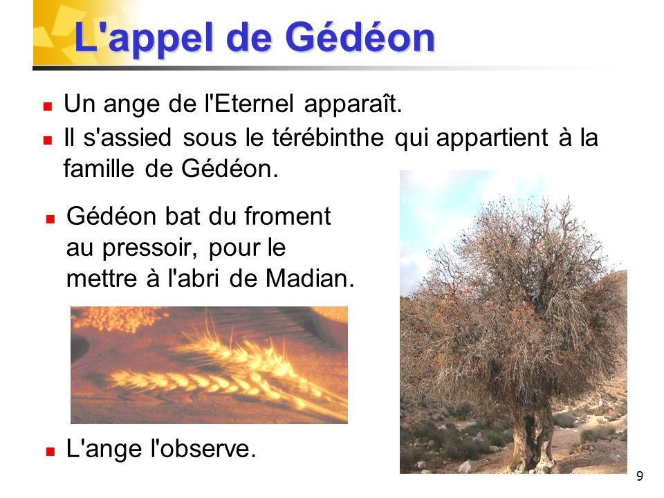 9 Gédéon bat du froment au pressoir, pour le mettre à l'abri de Madian. L'ange l'observe. L'appel de Gédéon L'appel de Gédéon Un ange de l'Eternel app