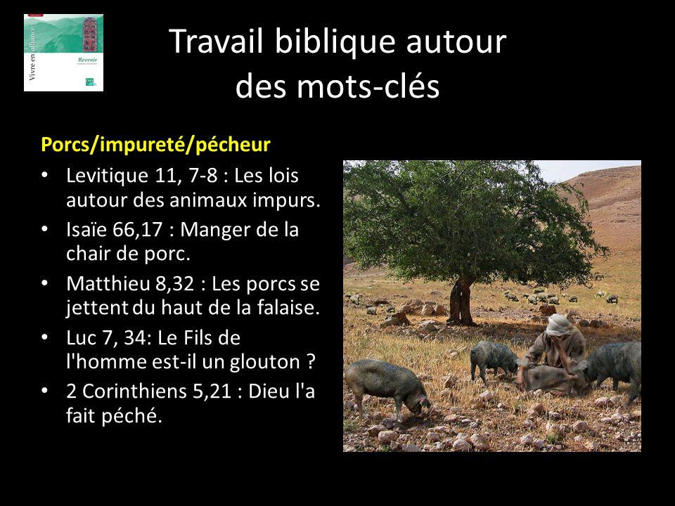 Travail biblique autour des mots-clés Porcs/impureté/pécheur Levitique 11, 7-8 : Les lois autour des animaux impurs. Isaïe 66,17 : Manger de la chair