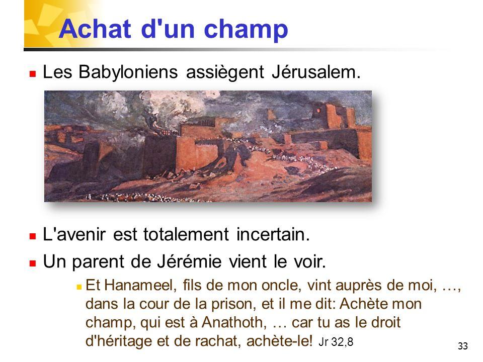33 Achat d'un champ Les Babyloniens assiègent Jérusalem. L'avenir est totalement incertain. Un parent de Jérémie vient le voir. Et Hanameel, fils de m