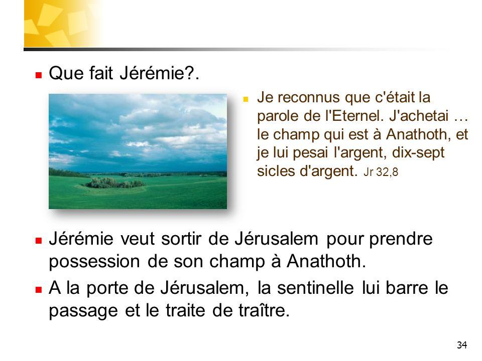 34 Que fait Jérémie?. Je reconnus que c'était la parole de l'Eternel. J'achetai … le champ qui est à Anathoth, et je lui pesai l'argent, dix-sept sicl