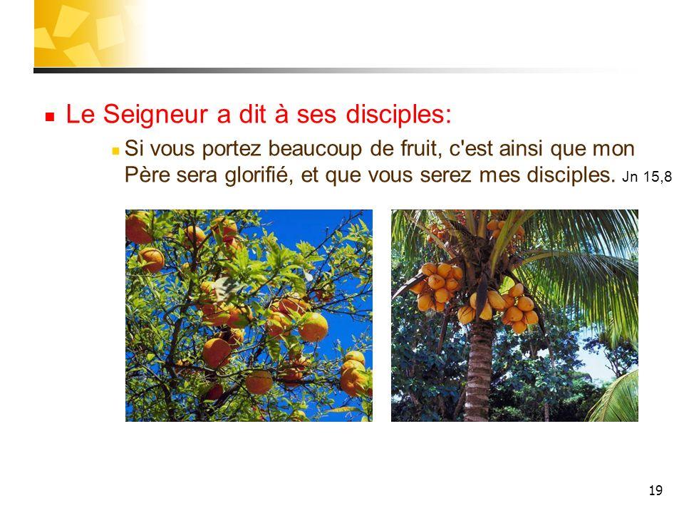 19 Le Seigneur a dit à ses disciples: Si vous portez beaucoup de fruit, c'est ainsi que mon Père sera glorifié, et que vous serez mes disciples. Jn 15
