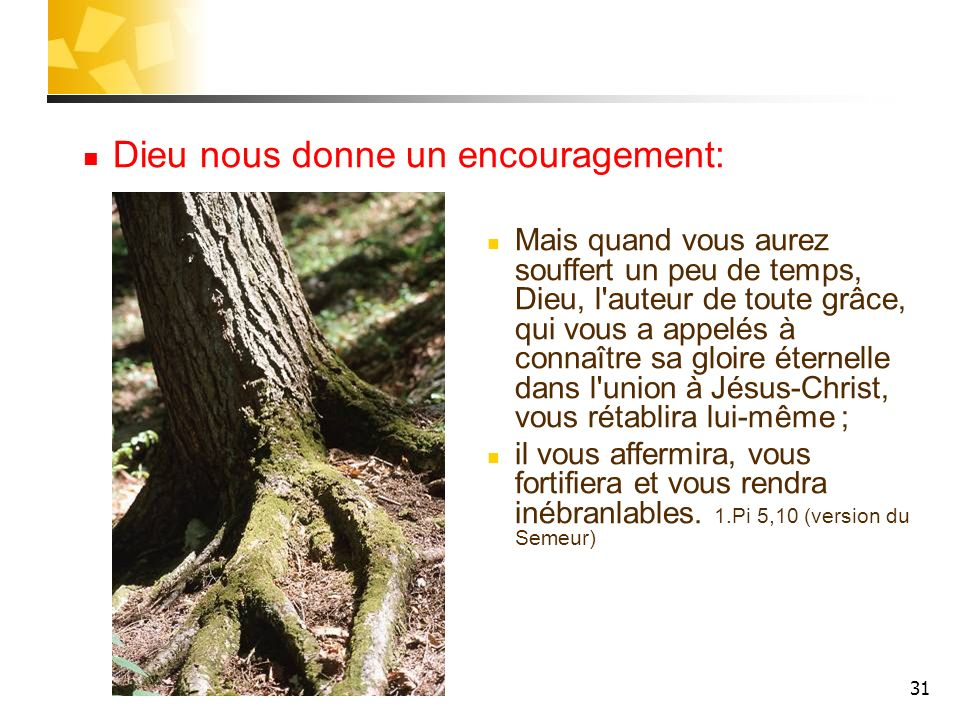 31 Dieu nous donne un encouragement: Mais quand vous aurez souffert un peu de temps, Dieu, l'auteur de toute grâce, qui vous a appelés à connaître sa