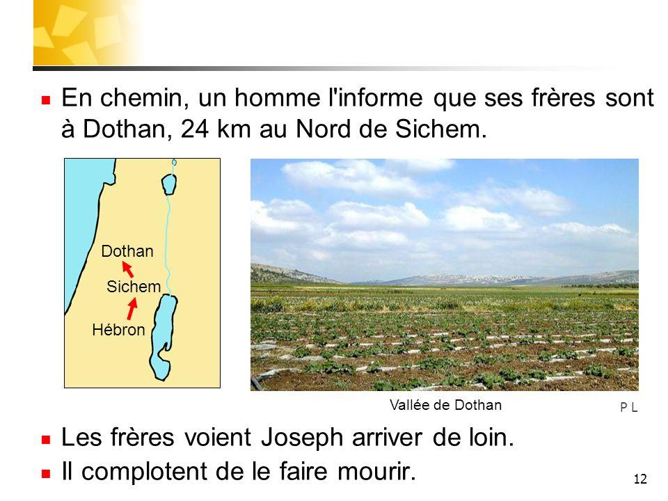 12 En chemin, un homme l'informe que ses frères sont à Dothan, 24 km au Nord de Sichem. Les frères voient Joseph arriver de loin. Il complotent de le