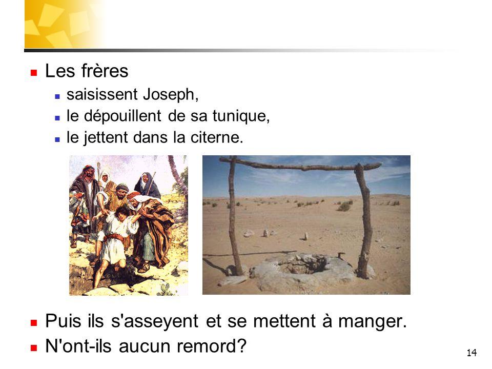 14 Les frères saisissent Joseph, le dépouillent de sa tunique, le jettent dans la citerne. Puis ils s'asseyent et se mettent à manger. N'ont-ils aucun