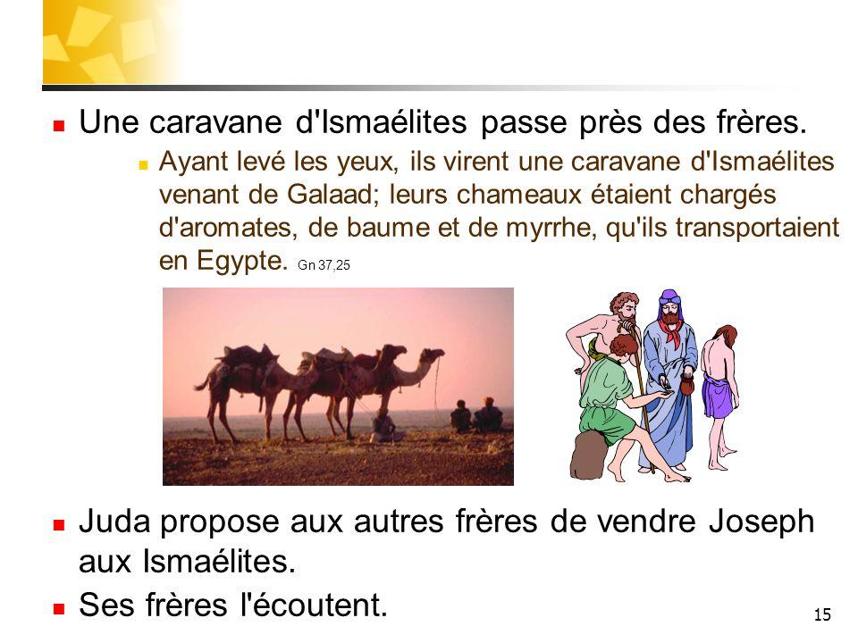 15 Une caravane d'Ismaélites passe près des frères. Ayant levé les yeux, ils virent une caravane d'Ismaélites venant de Galaad; leurs chameaux étaient