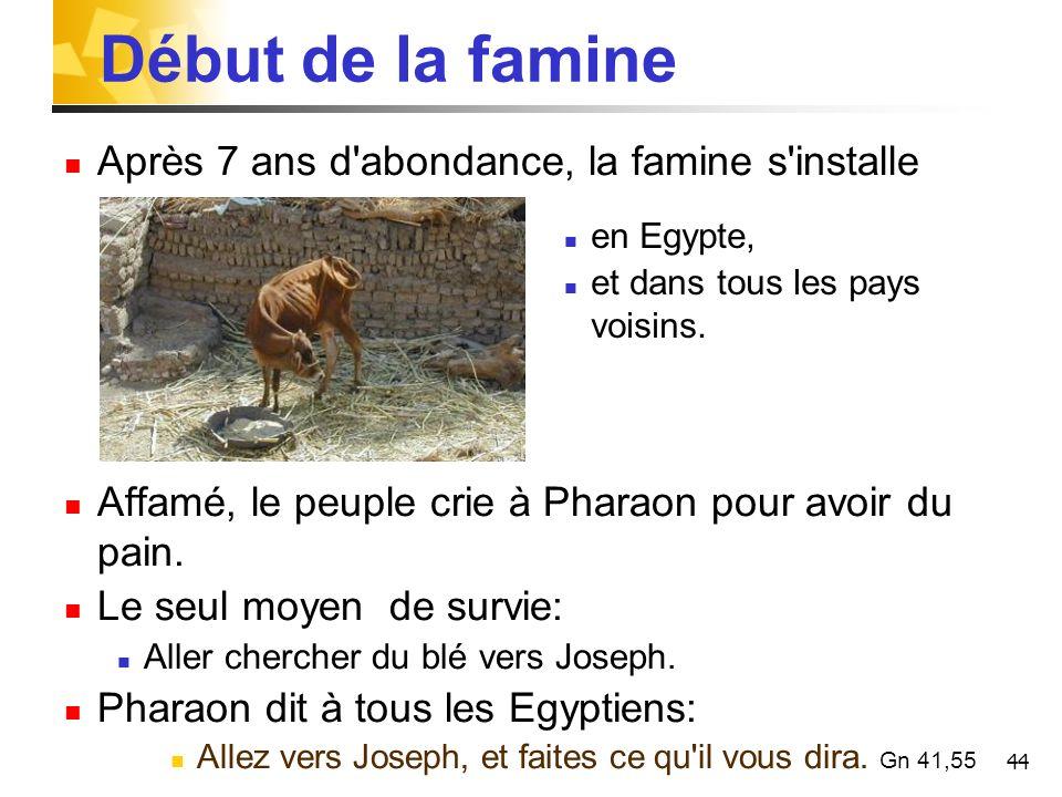 44 Début de la famine Après 7 ans d'abondance, la famine s'installe Affamé, le peuple crie à Pharaon pour avoir du pain. Le seul moyen de survie: Alle