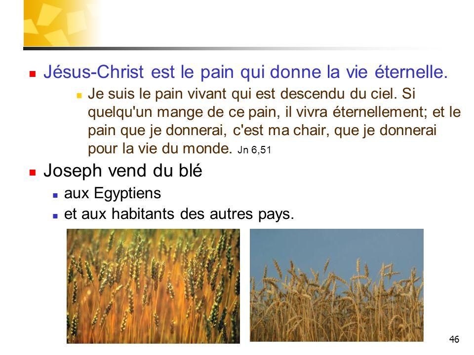 46 Jésus-Christ est le pain qui donne la vie éternelle. Je suis le pain vivant qui est descendu du ciel. Si quelqu'un mange de ce pain, il vivra étern