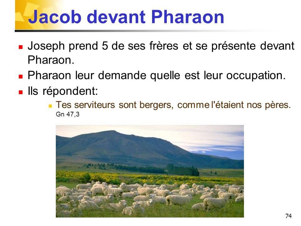 74 Jacob devant Pharaon Joseph prend 5 de ses frères et se présente devant Pharaon. Pharaon leur demande quelle est leur occupation. Ils répondent: Te