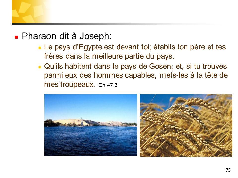75 Pharaon dit à Joseph: Le pays d'Egypte est devant toi; établis ton père et tes frères dans la meilleure partie du pays. Qu'ils habitent dans le pay