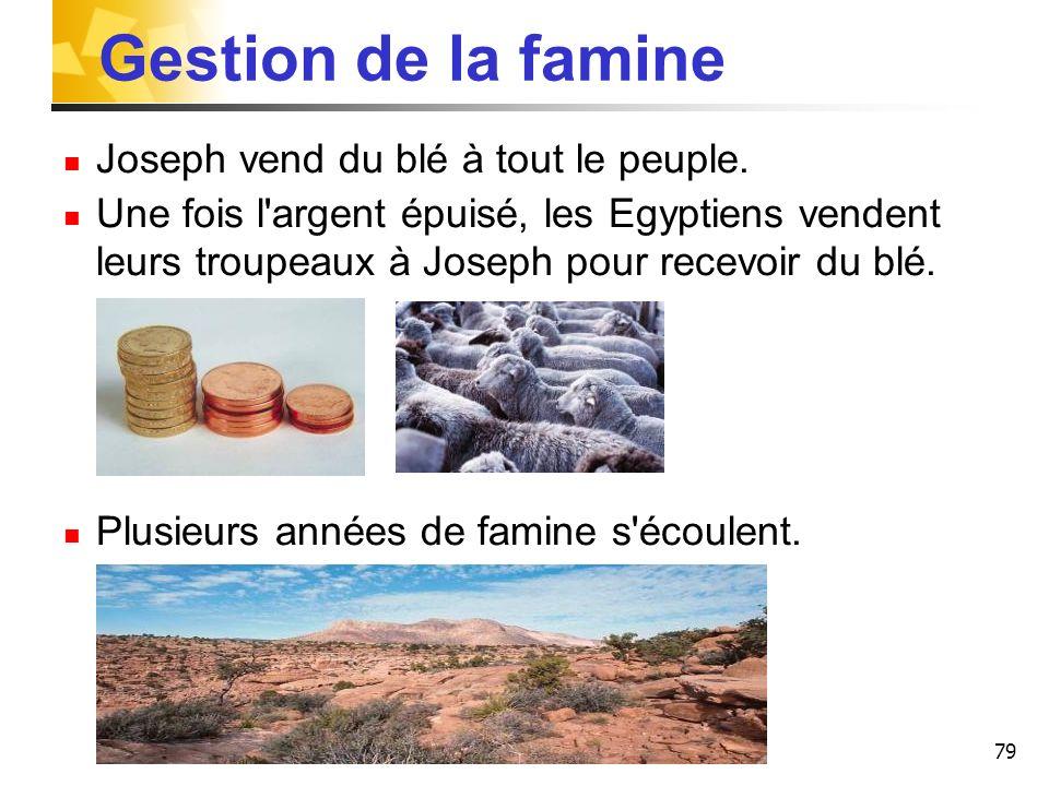 79 Gestion de la famine Joseph vend du blé à tout le peuple. Une fois l'argent épuisé, les Egyptiens vendent leurs troupeaux à Joseph pour recevoir du