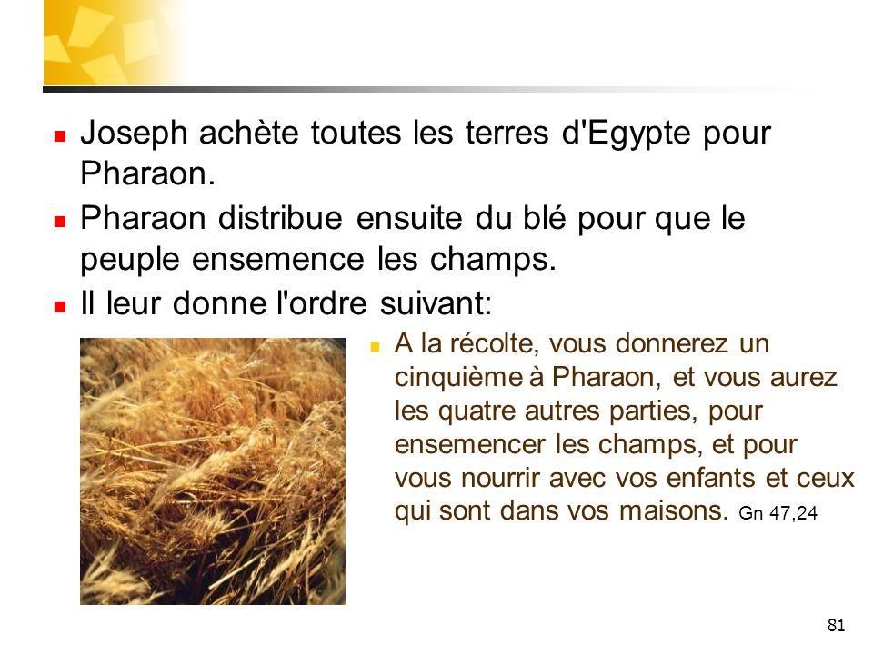 81 Joseph achète toutes les terres d'Egypte pour Pharaon. Pharaon distribue ensuite du blé pour que le peuple ensemence les champs. Il leur donne l'or