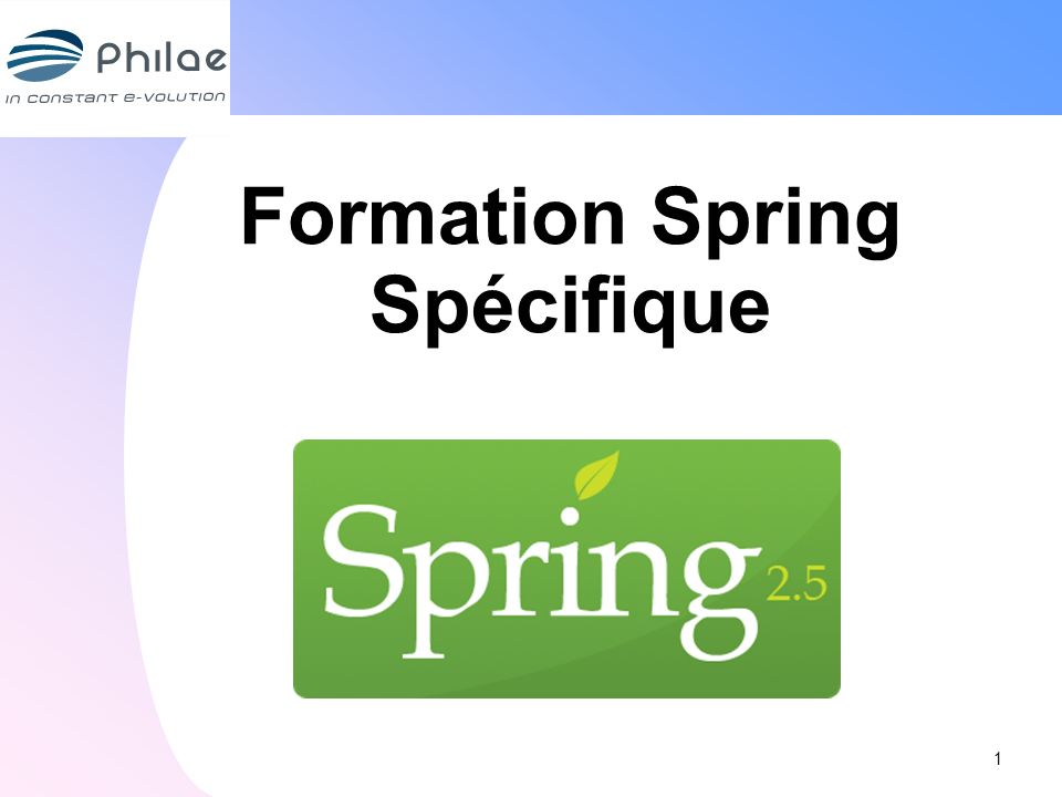 Formation Spring Spécifique 1