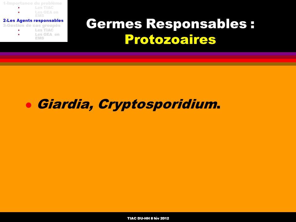 TIAC DU-HH 8 fév 2012 l Giardia, Cryptosporidium. Germes Responsables : Protozoaires 1-Importance du problème Les TIAC Les GEA en EMS 2-Les Agents res