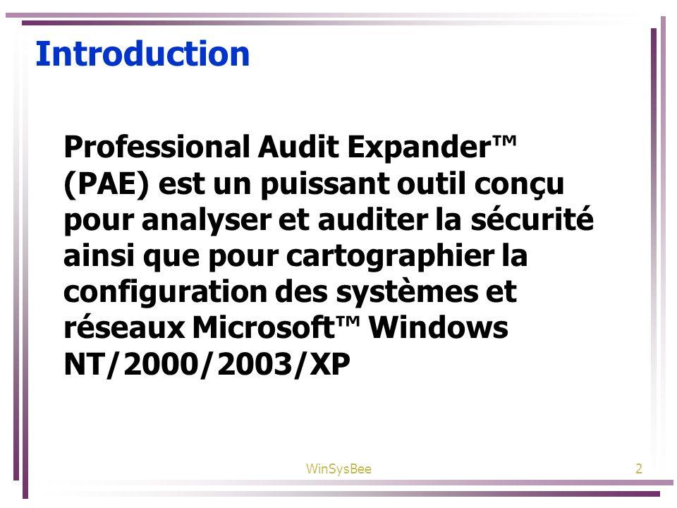 WinSysBee2 Introduction Professional Audit Expander (PAE) est un puissant outil conçu pour analyser et auditer la sécurité ainsi que pour cartographie