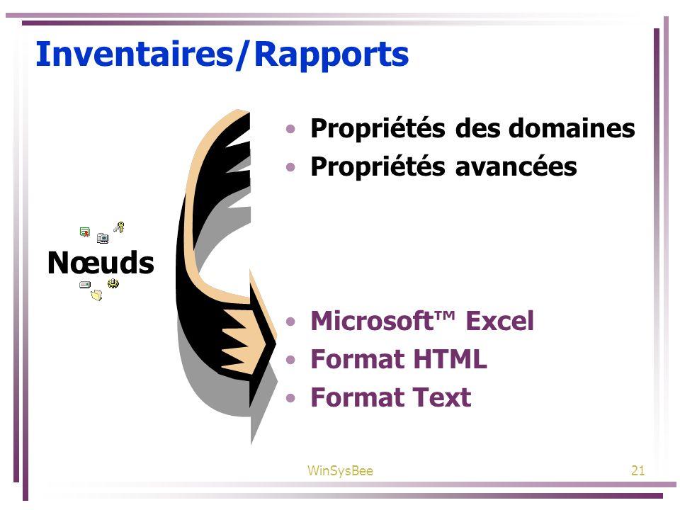 WinSysBee21 Inventaires/Rapports Propriétés des domaines Propriétés avancées Microsoft Excel Format HTML Format Text Nœuds