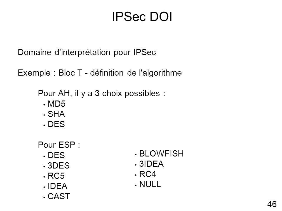 IPSec DOI 46 Domaine d interprétation pour IPSec Exemple : Bloc T - définition de l algorithme Pour AH, il y a 3 choix possibles : MD5 SHA DES Pour ESP : DES 3DES RC5 IDEA CAST BLOWFISH 3IDEA RC4 NULL
