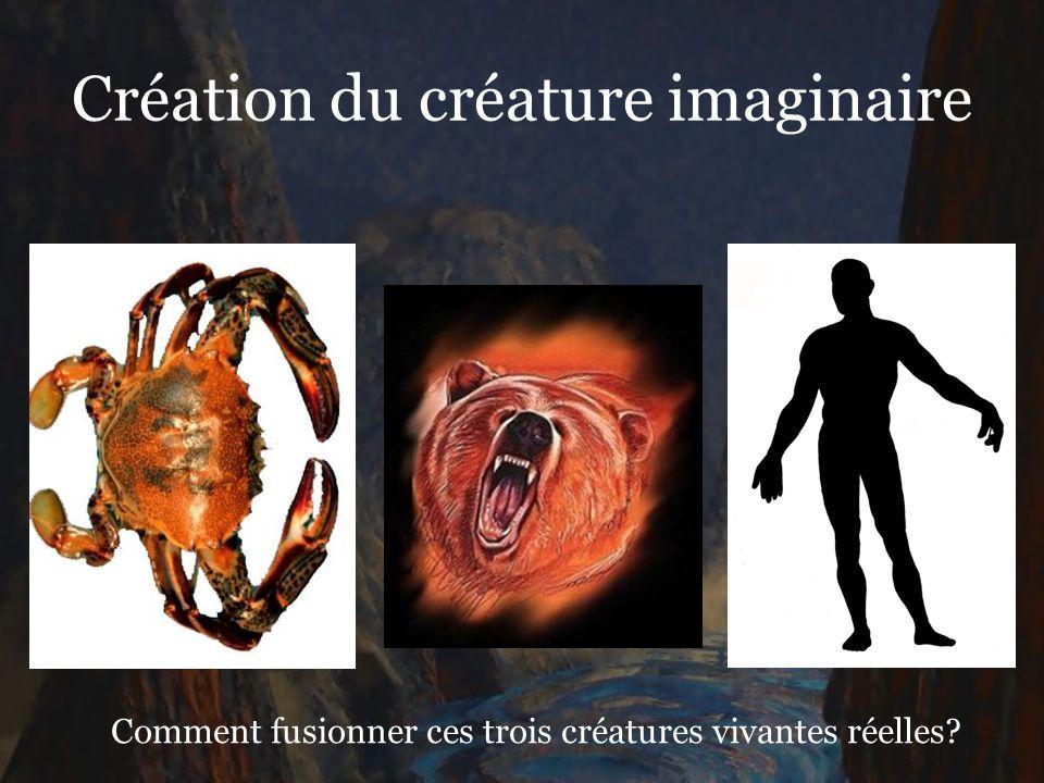 Création du créature imaginaire Comment fusionner ces trois créatures vivantes réelles?