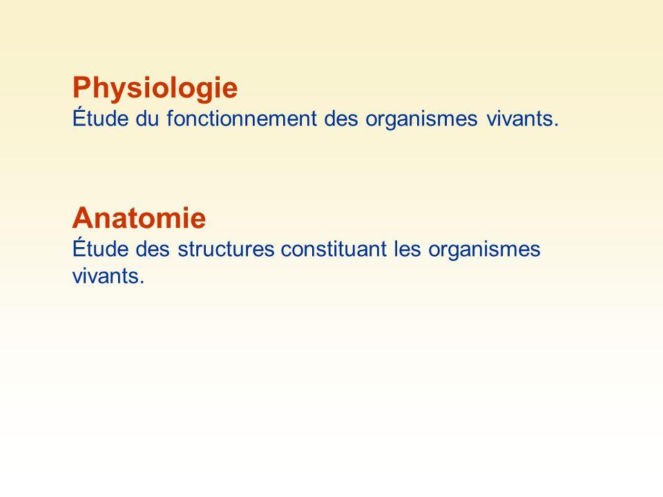 Physiologie Étude du fonctionnement des organismes vivants. Anatomie Étude des structures constituant les organismes vivants.