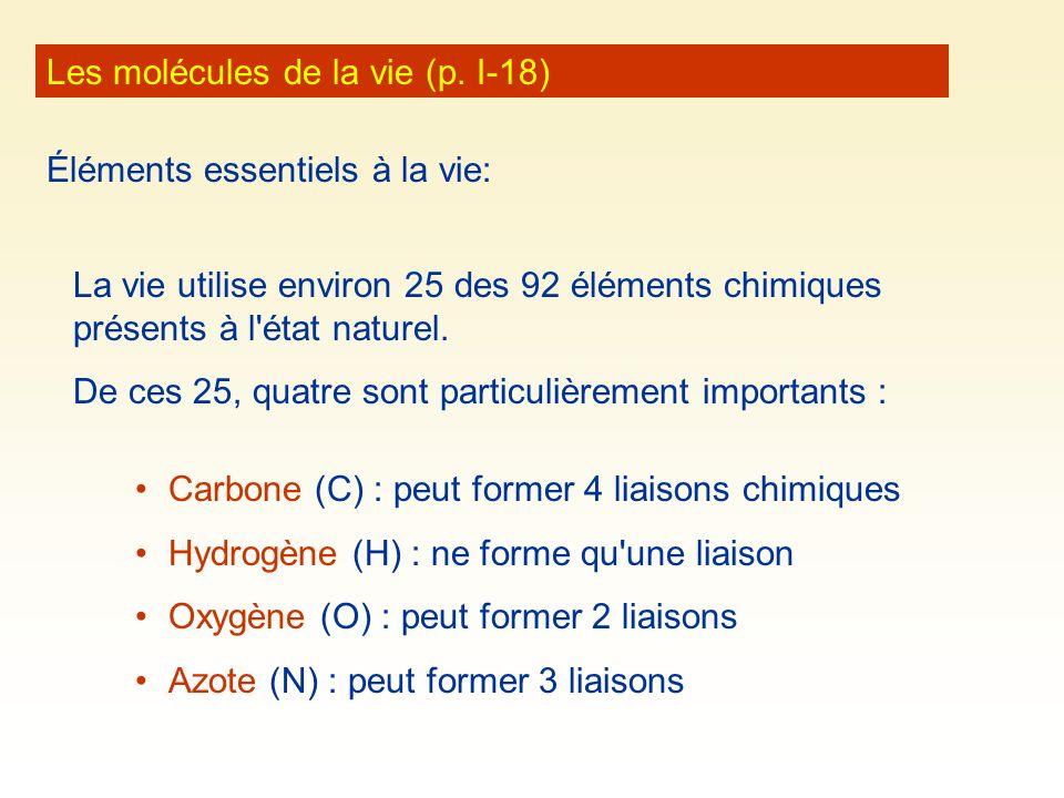 Les molécules de la vie (p. I-18) Éléments essentiels à la vie: La vie utilise environ 25 des 92 éléments chimiques présents à l'état naturel. De ces