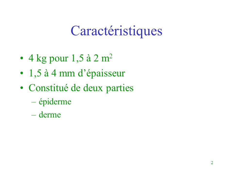 2 Caractéristiques 4 kg pour 1,5 à 2 m 2 1,5 à 4 mm dépaisseur Constitué de deux parties –épiderme –derme