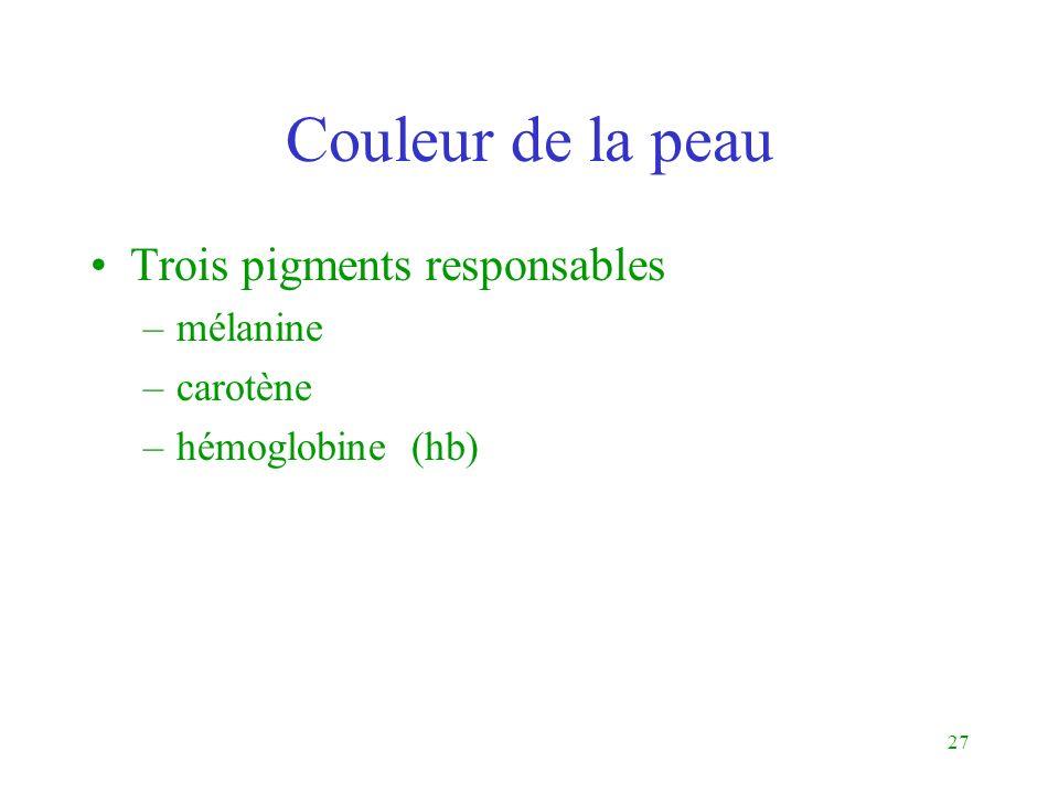 27 Couleur de la peau Trois pigments responsables –mélanine –carotène –hémoglobine (hb)