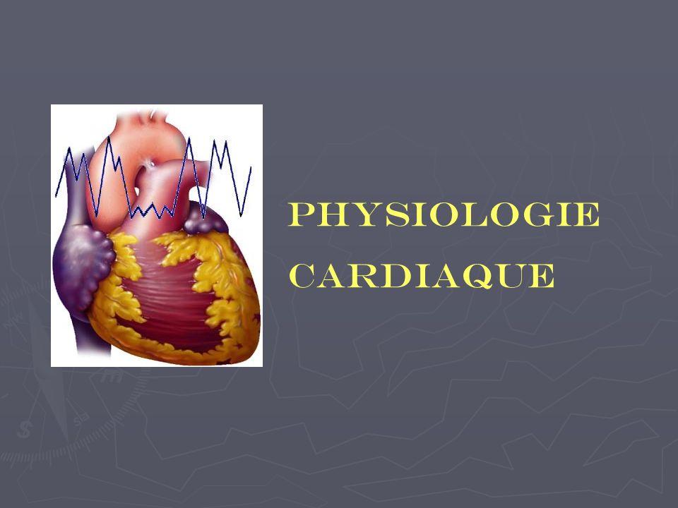 Physiologie cardiaque Majorité des corps cellulaires des fibres cardio-accélératrices = Moelle épinière = centre cardio-accélérateur médullaire Certains corps cellulaires = substance réticulée bulbaire = centre cardio- accélérateur bulbaire Fibres font relais dans le ganglion stellaire Nerfs issus de ces ganglions se rendent au plexus aortique et se distribuent à lensemble du myocarde et du tissu nodal.